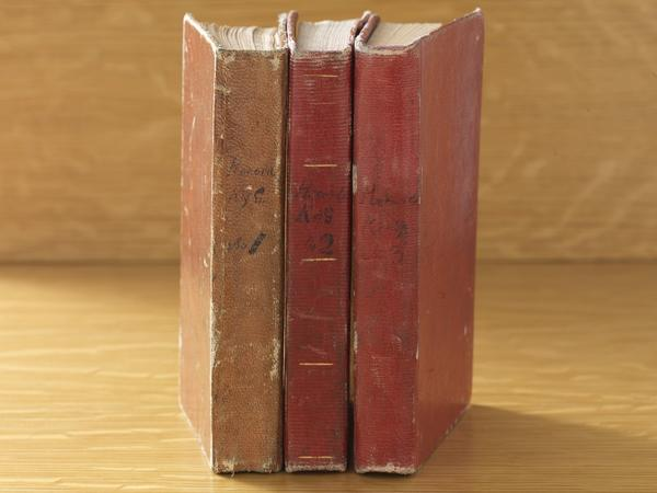 Three volumes of Council of Fifty minutes